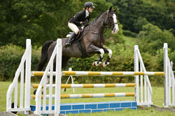 Area 15 Show Jumping 03-08-2015
