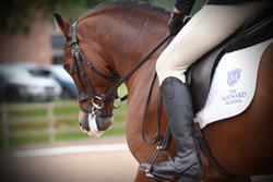 The NSEA at Bicton Arena 04/10/15