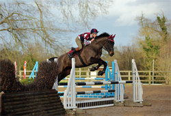 Bicton Arena Eventing 10-01-16