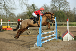 NSEA Eventers Challenge at Bicton Arena 23/01/16