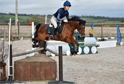 NSEA SJ County Qualifiers at Bicton 31-01-16
