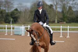 Bicton Unaffilliated Dressage Championships 2016
