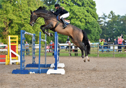 BICTON ARENA MAY SPECTACULAR May 26th - 30th 2016