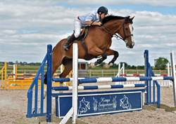 Kings Sedgemoor Equestrian BS Seniors August 2016