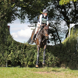 Cattistock Hunt Open ODE 09-10-2016
