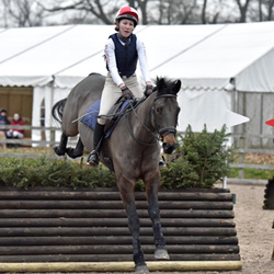 NSEA Eventers Challenge at Bicton Arena 21-01-17