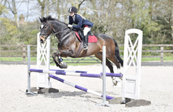 Moreton Unaffiliated Show Jumping 15-04-2017